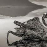 """Λίμνη του Θανάτου: Ότι την ακουμπάει του """"ρουφάει"""" τη ζωή – Καταρρίπτεται"""