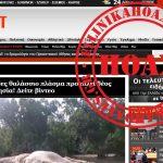 Μυστηριώδες θαλάσσιο πλάσμα προκαλεί δέος στην Ινδονησία! – Καταρρίπτεται