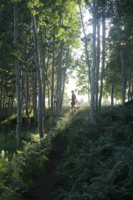 Flagstaff - Trail Running
