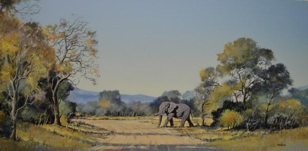 Mel Wildlife Paintings Elliott Art Online