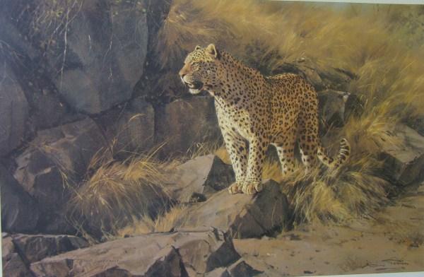 Dino Paravano Elliott Art Online