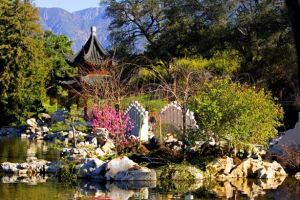 tao_garden