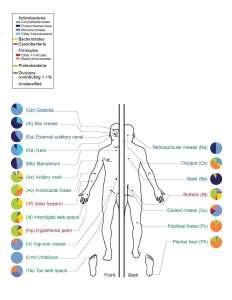 Microbiome_Wikipedia