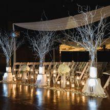 winter wedding, ceremony, branches, snow
