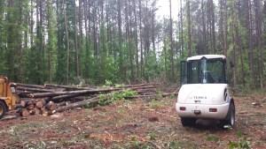 Lot Clearing Tree Company Richmond Virginia