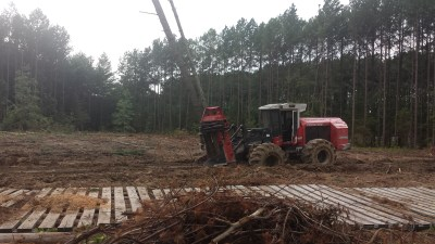 Land Clearing Services in Richmond Virginia