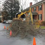 Tree Service RVA chipper