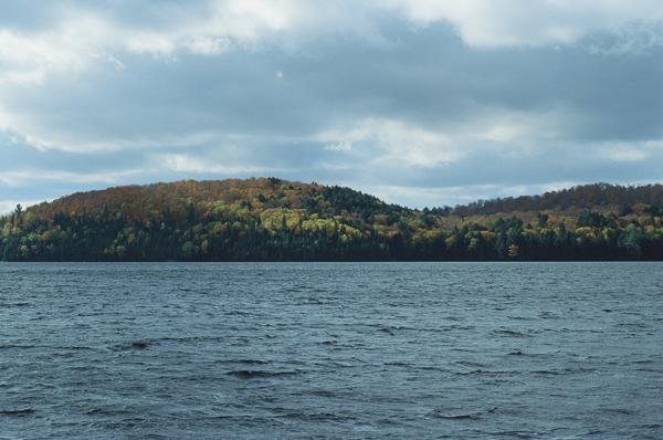 fall foliage on a lake shore
