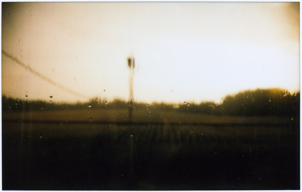 An Instax wide picture of Exeter Maine taken on August 11, 2014. It had just rained and the sun was setting, giving everythign a golden dewy look.