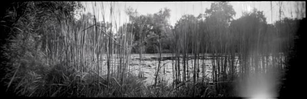 panoramic pinhole landscape of forwell trail