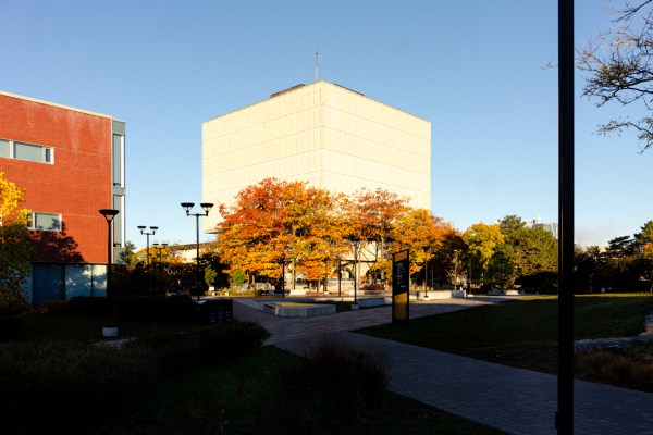 A landscape image of color trees and the Dana Porter Library.