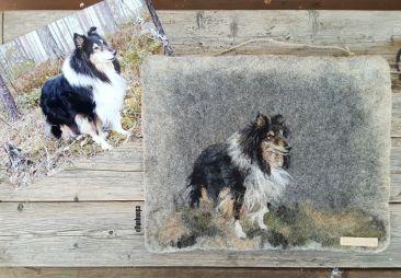 collie, huopataulu hiinta, lahjaidea, felted painting dog, dog painting, huovutus, huopataulu lemmikistä,