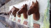 huopataulu, taulu hevosesta, suomenhevonen, hevonen, ratsastus, ratsastaja, lahja ratsastajalle, ratsastajan nettikauppa