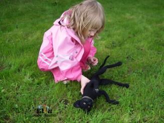 kissa, musta kissa, kissa ja nurmikko, kesäteatteri, huopakissa, kissa huovasta