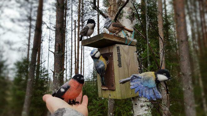 lintu huovasta, huovutus, neulahuovutus ohje, lintu neulahuovuttamalla