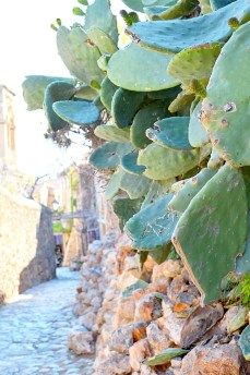ellwed Ellwed_23 Discover Monemvasia – the medieval city of Greece
