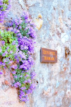 ellwed Ellwed_45 Discover Monemvasia – the medieval city of Greece