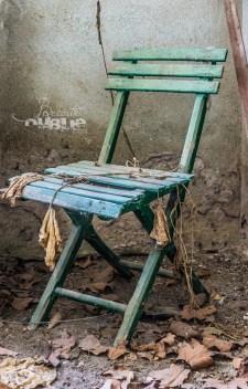 L'orangerie abandonné (1)