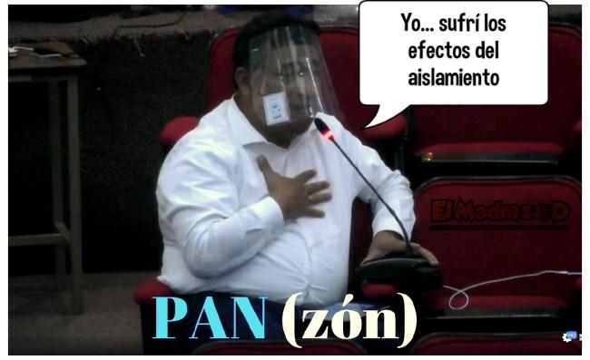 Diputado PANzón