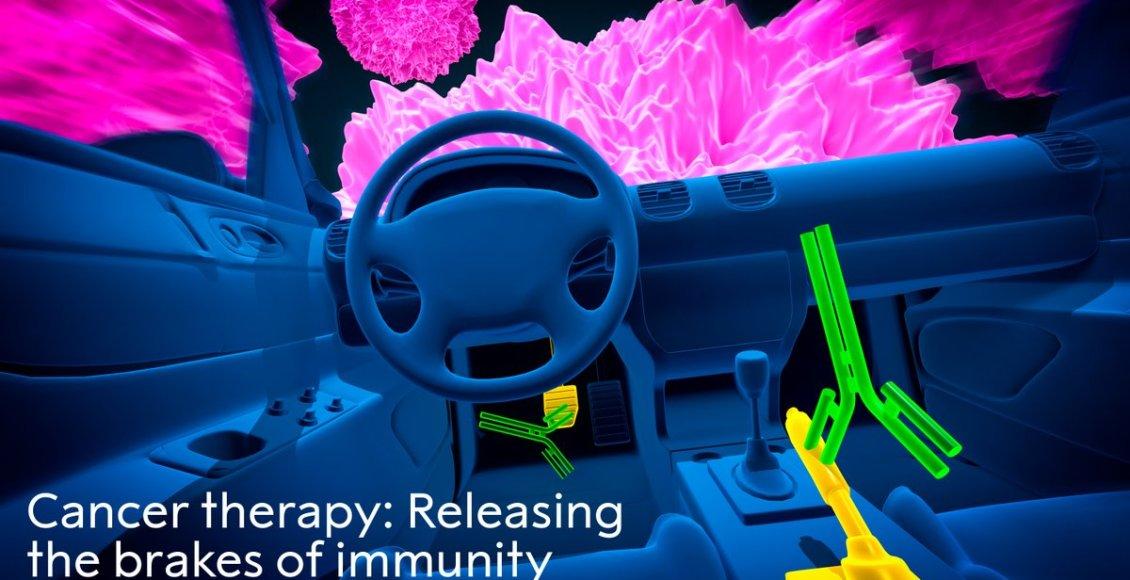 العلاج المناعي ومرض السرطان