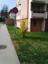 Photo2641