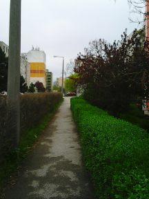 Photo2792