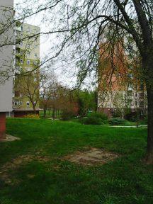 Photo2880