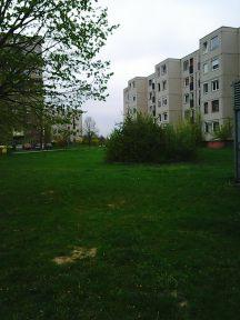 Photo2895
