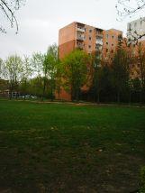 Photo2896