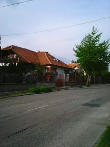 Photo3331