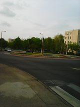 Photo3350