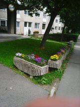 Photo3407