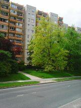 Photo3442