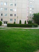 Photo3480