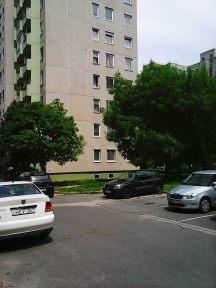 Photo4238