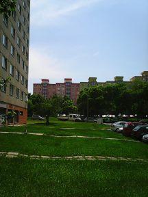 Photo4282