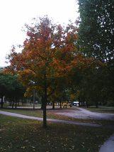 photo5411