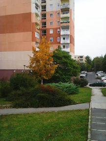 photo5505