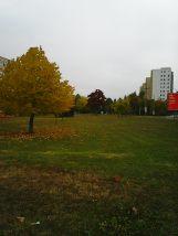 photo5557