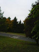 photo5624