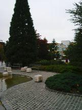 photo5672