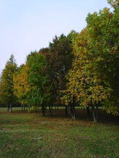 photo5699