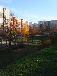 photo6015