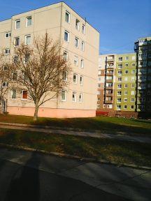 photo6050
