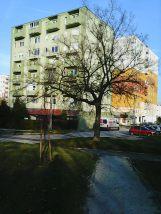 photo6071