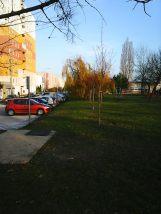 photo6072
