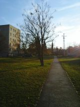 photo6079