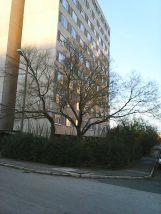 photo6182