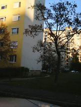 photo6188