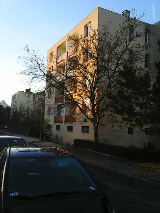 photo6204